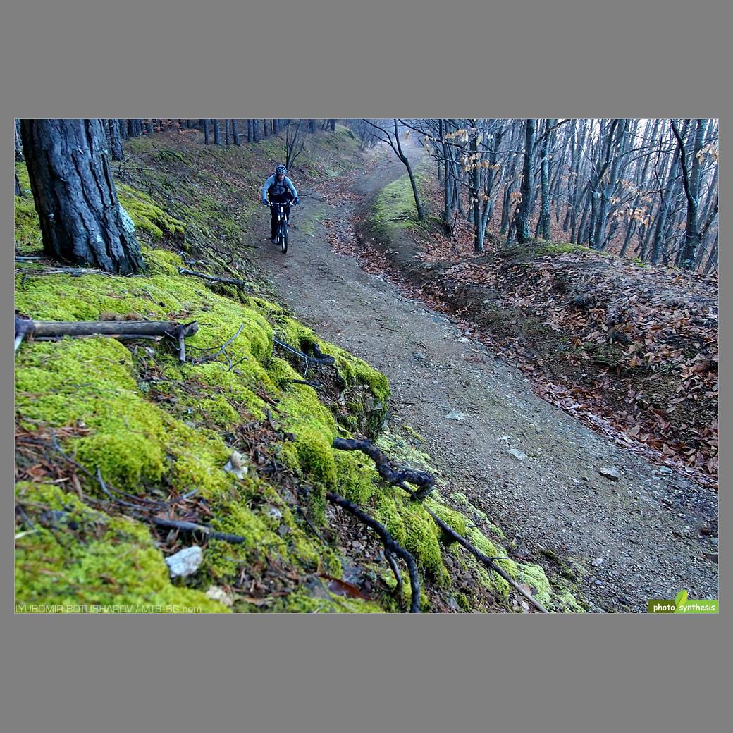 Вие разглеждате снимки от статията: Горна Брезница 2