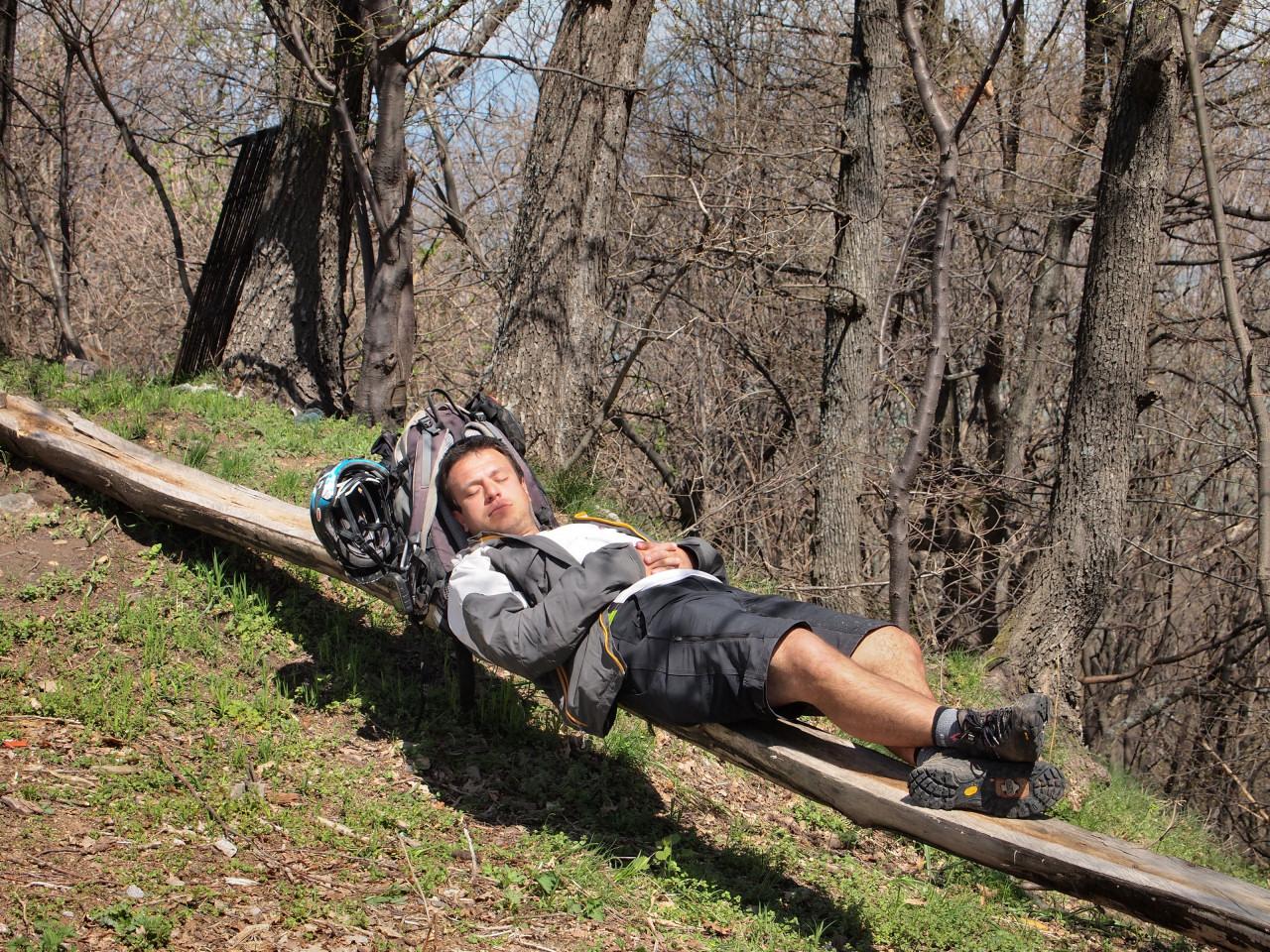 Вие разглеждате снимки от статията: Сред горите и шубраците на Елин връх