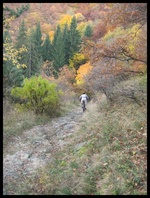Вие разглеждате снимки от статията: Бояна - Тихия кът - Бояна