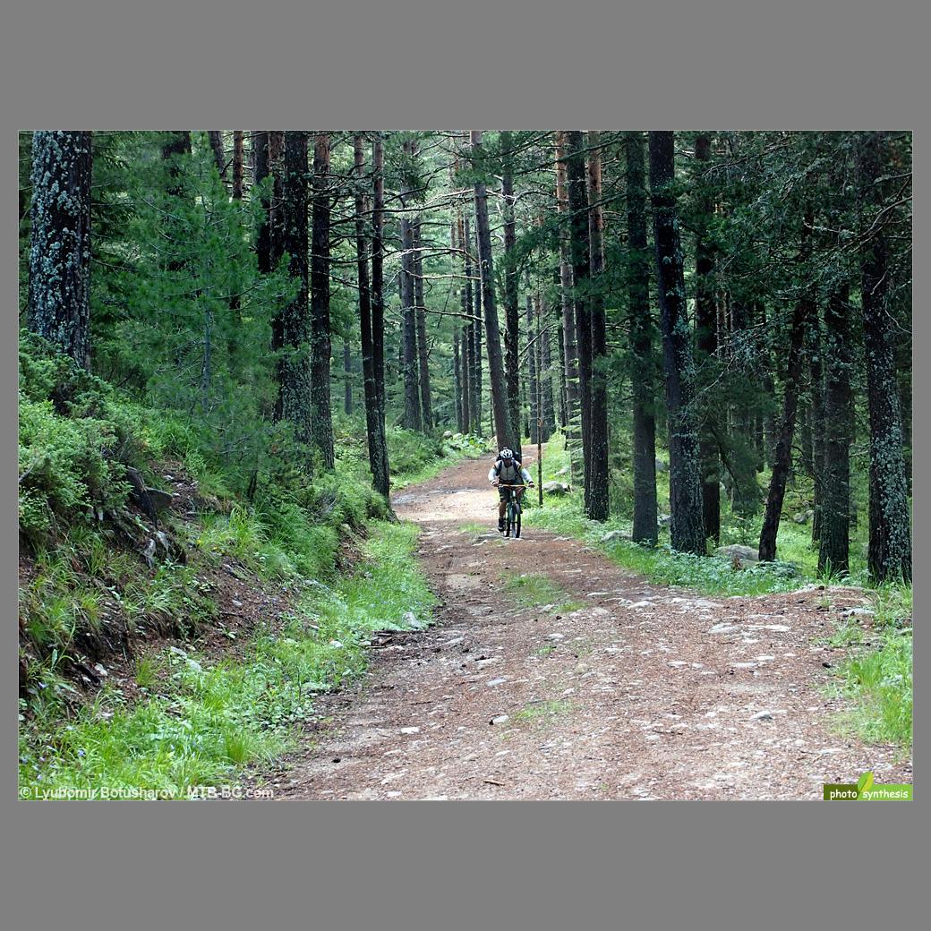 Вие разглеждате снимки от статията: Говедарци - Яворова поляна (хижа Вада) - Мальовица
