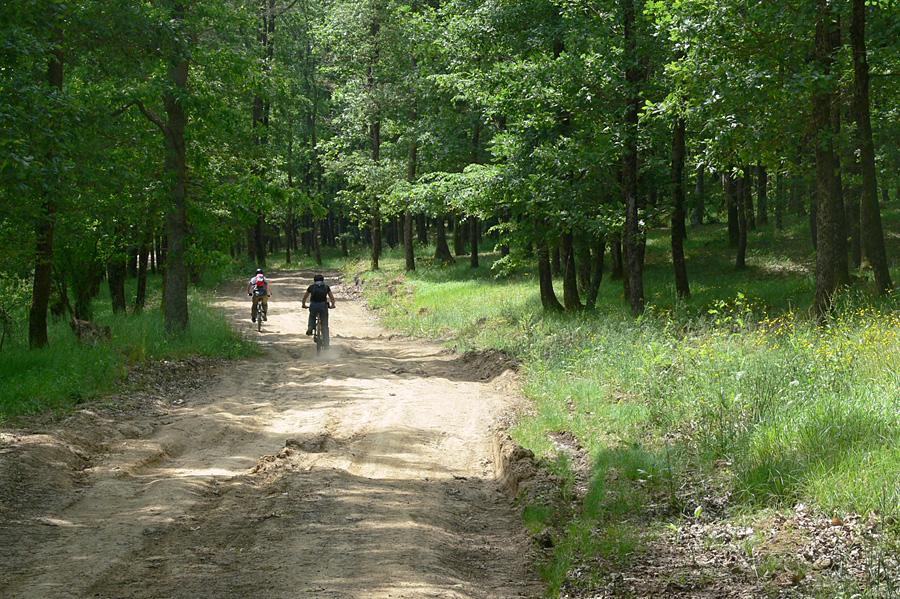 Вие разглеждате снимки от статията: Заберново-Кости-Синеморец - 60 км в Странджа